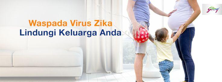 Tips HIT Obat Nyamuk : 9 Cara Mudah Menghindari Nyamuk yang Membawa Virus Zika