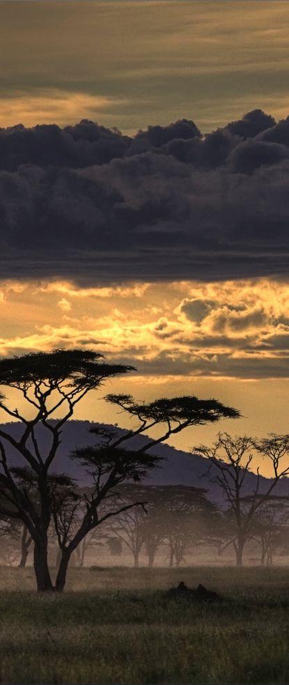 Sunset at Masai Mara, Tanzania, Africa