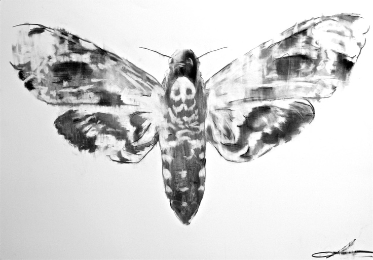 Jon's moth. We are looking into getting this digitally printed onto fabric rolls