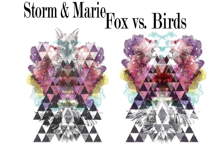 Storm - Fox vs. Birds