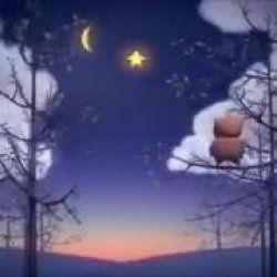 Esta linda mensagem de boa noite é perfeita para deixar o final do dia de seus amigos e amigas com muito mais carinho. Compartilhe com seus amigos e amigas do Facebook e mostre o poder de uma mensagem de boa noite para todos!