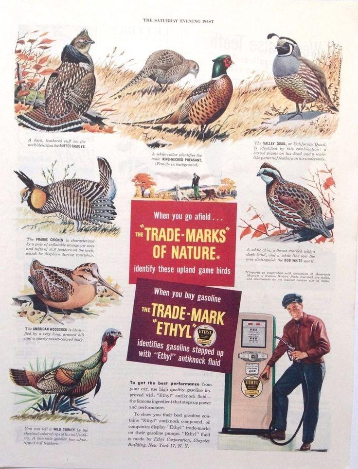 ETHYL GASOLINE GAME BIRDS AD RETRO GAS PUMP BOWSER 1948 original vintage advert