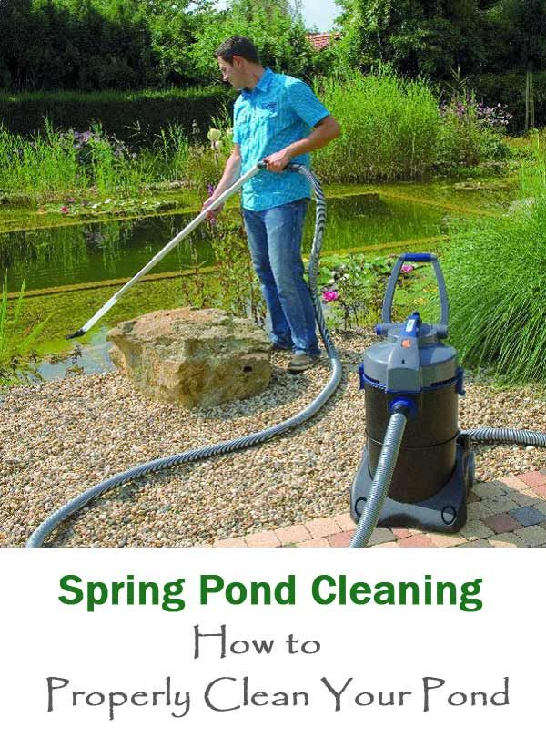 7 best pond water garden products tips images on for Koi pond maintenance tips