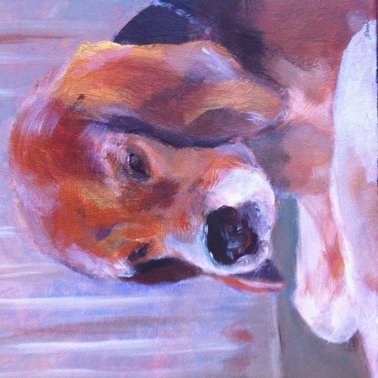 :) újabb kutyacuklata