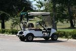 How to Adjust the Governor on a Yamaha Golf Cart | eHow