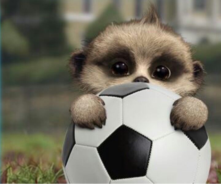 Oleg plays football. The next David Beckham?