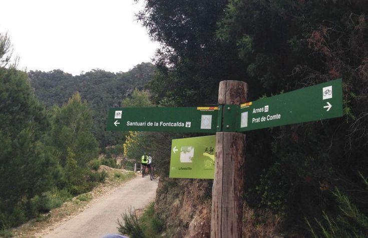 via verde familiar en tortosa Spanish, Cycling, Deporte, Green, Biking, Bicycling, Spanish Language, Spain, Ride A Bike