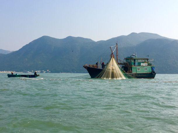 Fishing Boats in Tai O Village on Lantau Island in Hong Kong