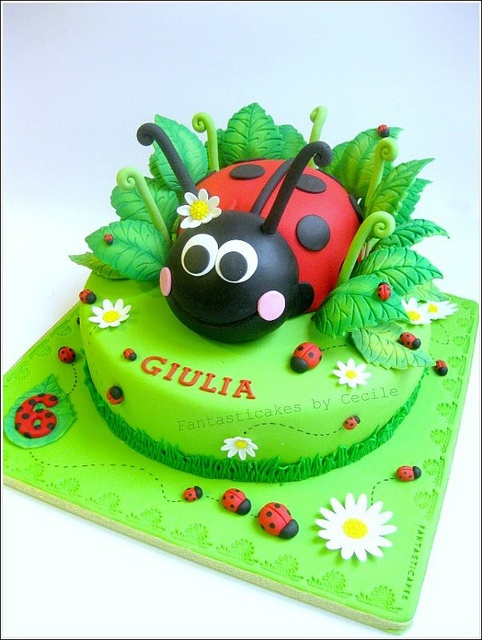 ladybird...I liked the ladybird on a green base with flowers so I made a large ladybird cake and put it on a green iced base with yellow flowers it looked brill