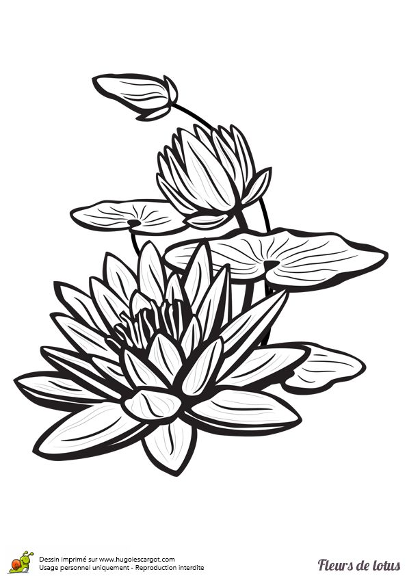 25 best ideas about dessiner une fleur on pinterest - Dessin une fleur ...