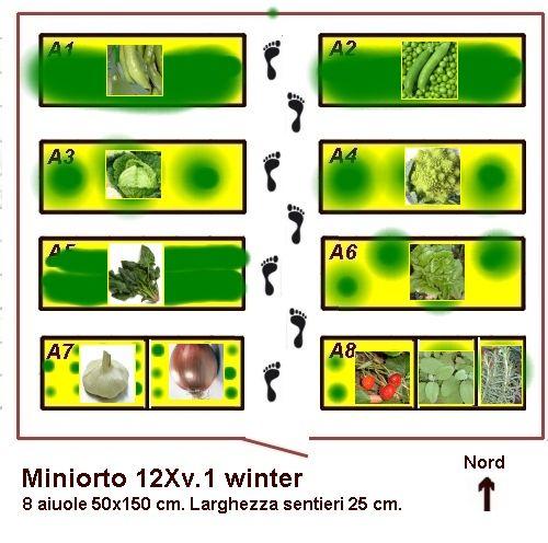 Progetto di un piccolo orto invernale da 12 mq. Piantina e piano colturale : Progetti di piccoli orti