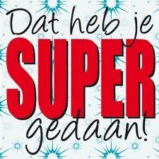 Graag willen Anthony, Melissa, Bauke, Patrick, Menno, Joeri, Chantal, Jeffrey, Bas, Iris, Jan, Coen, Lissa en Dennis feliciteren met het behalen van hun rijbewijs! Dat hebben jullie allemaal super gedaan! #Geslaagd #NivoXL #Nijmegen