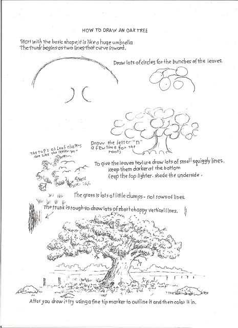 How to Draw Worksheets for The Young Artist: How to Draw an Oak Tree, Drawing Worksheet For You...