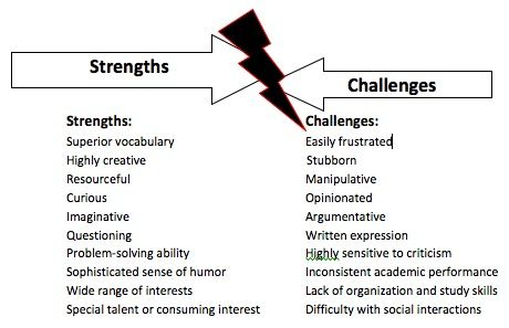 The Strengths and Challenges of Twice Exceptional kids