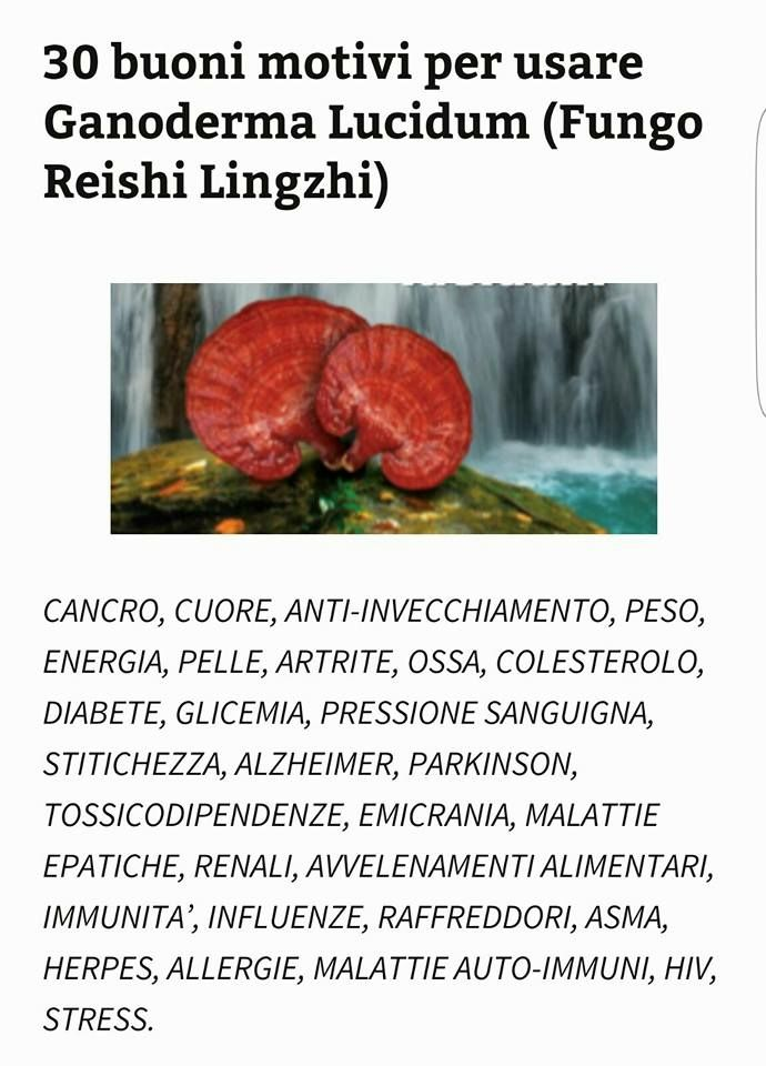 Prodotti per la salute. Alimento ricco e completo. www.salutecaffe.it