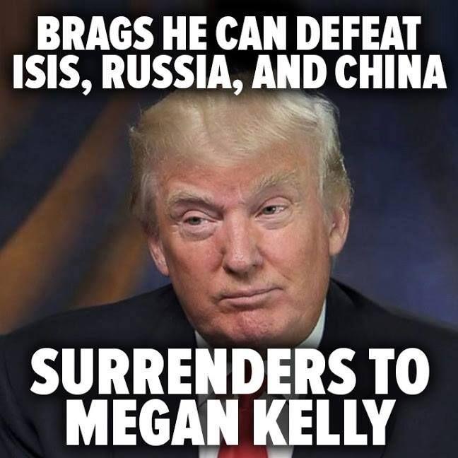 06fd7ce0de13dadf2a61992c811279af political satire donald trump 46 best dump trump! images on pinterest donald trump, donald o,Dump Trump Meme