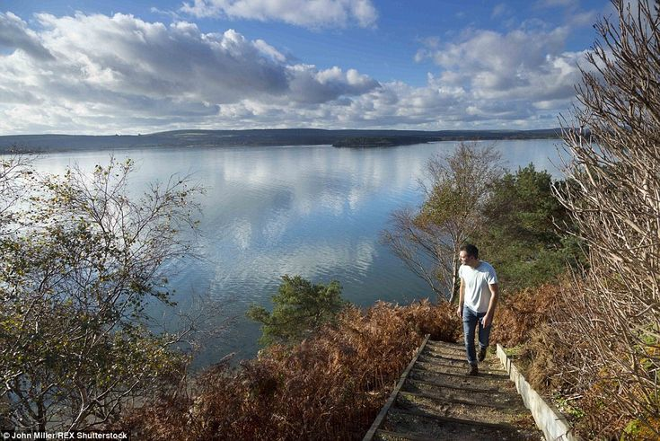 Time for a stroll: Brownsea Island in Dorset (pictured) is a haven for wildlife such as re...
