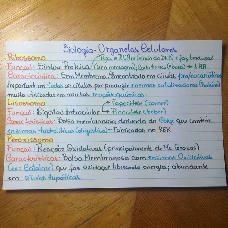 Biologia-resumo-organelas celulares