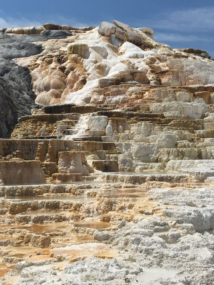 7 Day Road Trip Itinerary through Grand Teton and Yellowstone National Park - Day 4 at Mammoth Hot Springs