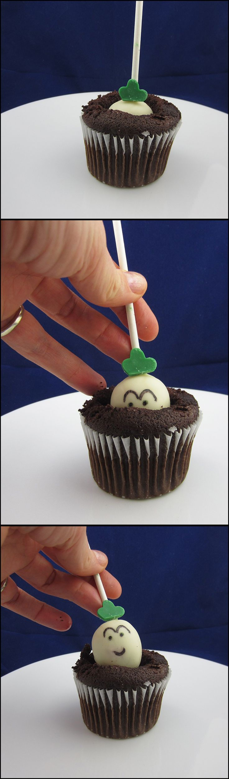 "http://www.snackordie.com/super-mario-bros-cake-pop-turnips/  These cake pop turnips are modeled after the vegetable from Super Mario Bros. 2 and pulled out of a chocolate cupcake. This cake pop and cupcake combo will work will for non-video game related cake pop vegetables pulled from the chocolate cupcake ""ground."""