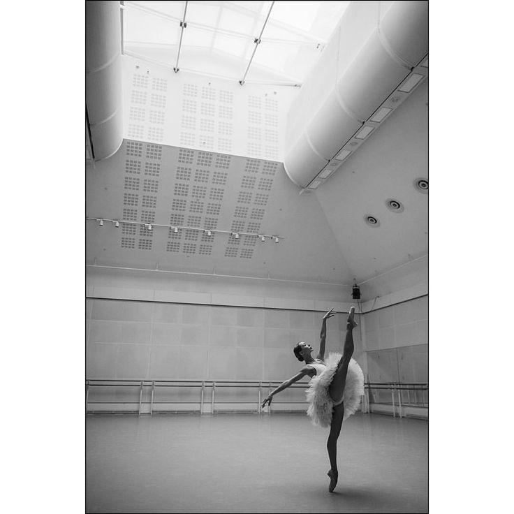 2667 best The Art Of Dance images on Pinterest Ballet dancers