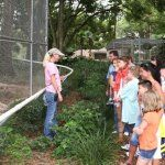 Educational guided tours