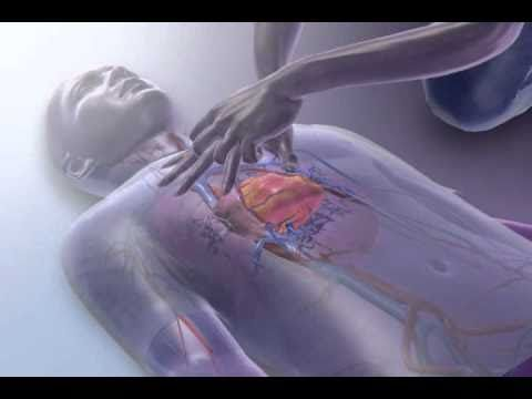 CPR - YouTube
