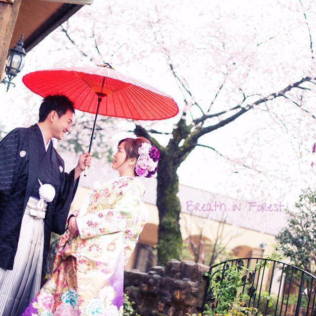 【breath_in_forest】さんのInstagramをピンしています。 《一足先に桜の前撮りのご紹介! 桜の時期に前撮りもとっても素敵です(*^-^*) ぜひご相談ください♪ #wedding#happy#love#breathinforest#ブレスインフォレスト#ウェディング#結婚式#新郎新婦#新郎#新婦#先輩花嫁#結婚式場#宇都宮#インターパーク#桜#桜前撮り#前撮り#フォト#写真#和装#紋付#色打掛#番傘#静風#姉妹店#仲良し#春#先取り》