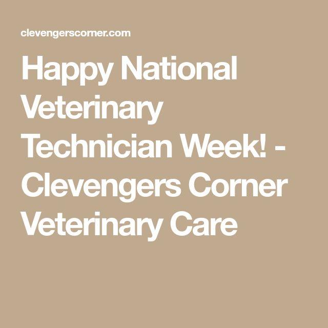 Happy National Veterinary Technician Week! - Clevengers Corner Veterinary Care