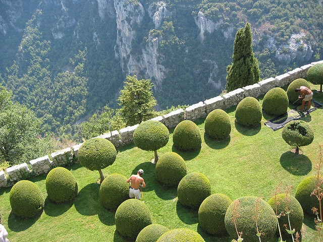 Gourdon's Garden - Provence - FranceGardens Ideas, Green Gardens, Flower Gardens, Photography Tips, Beautiful Gardens, Digital Photography, Landscapes Photography, Wall Gardens, Provence France