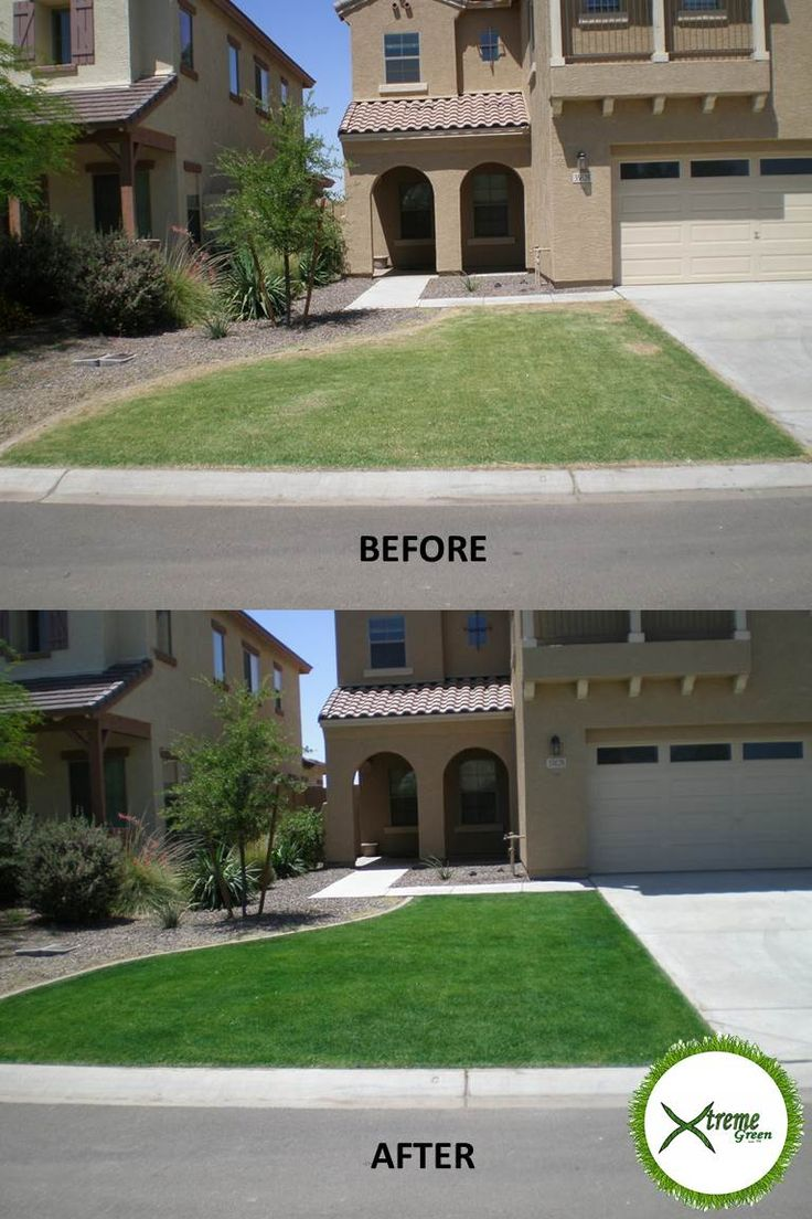 New See the difference having your lawn painted with Xtreme Green Grass Alabama can make