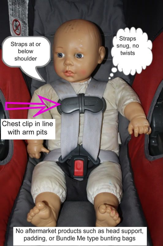 car seat harness placement