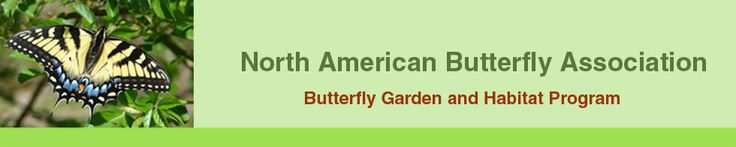 NABA's Butterfly Garden and Habitat Program can help you create a paradise for butterflies while encouraging habitat restoration, no matter how large or small an area you have.