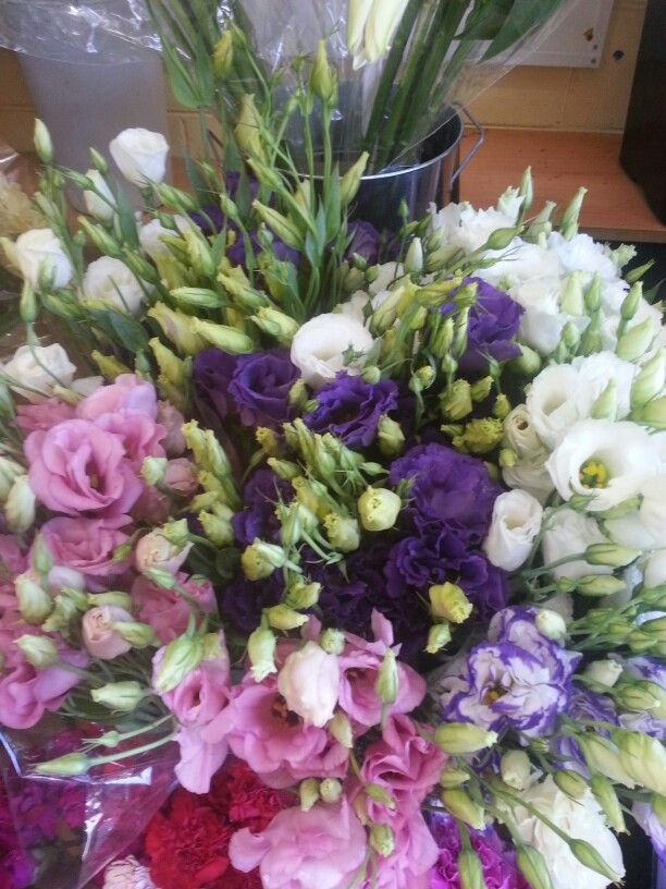 Ohhh beautiful lizianthus flowers in  3 diferent colours 'pink, purple and white'