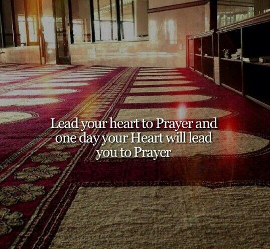 To prayer we go !