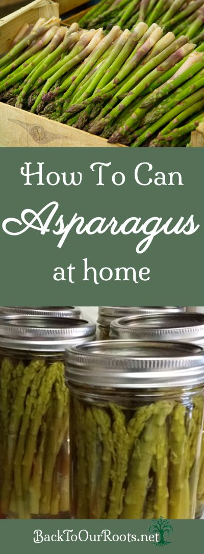 I prefer to eat my asparagus fresh in the spring, but it's always nice to have some available for other times of the year. So let's start canning asparagus!