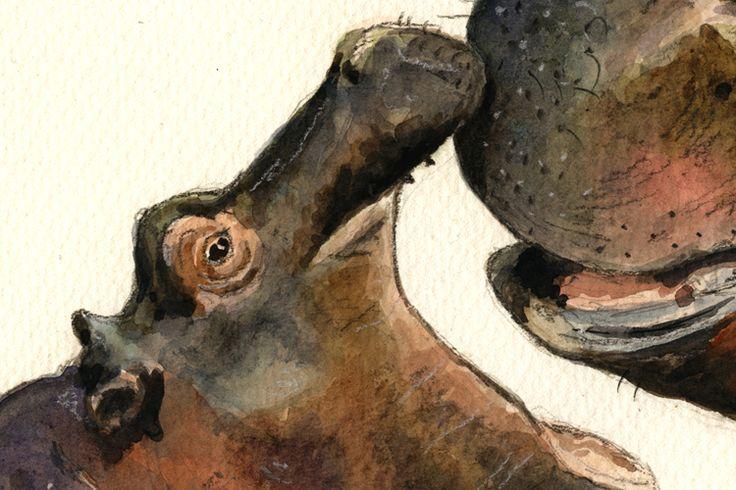 juan bosco artist hippos | ... and baby hippo swimming original watercolor-drawing by Juan Bosco