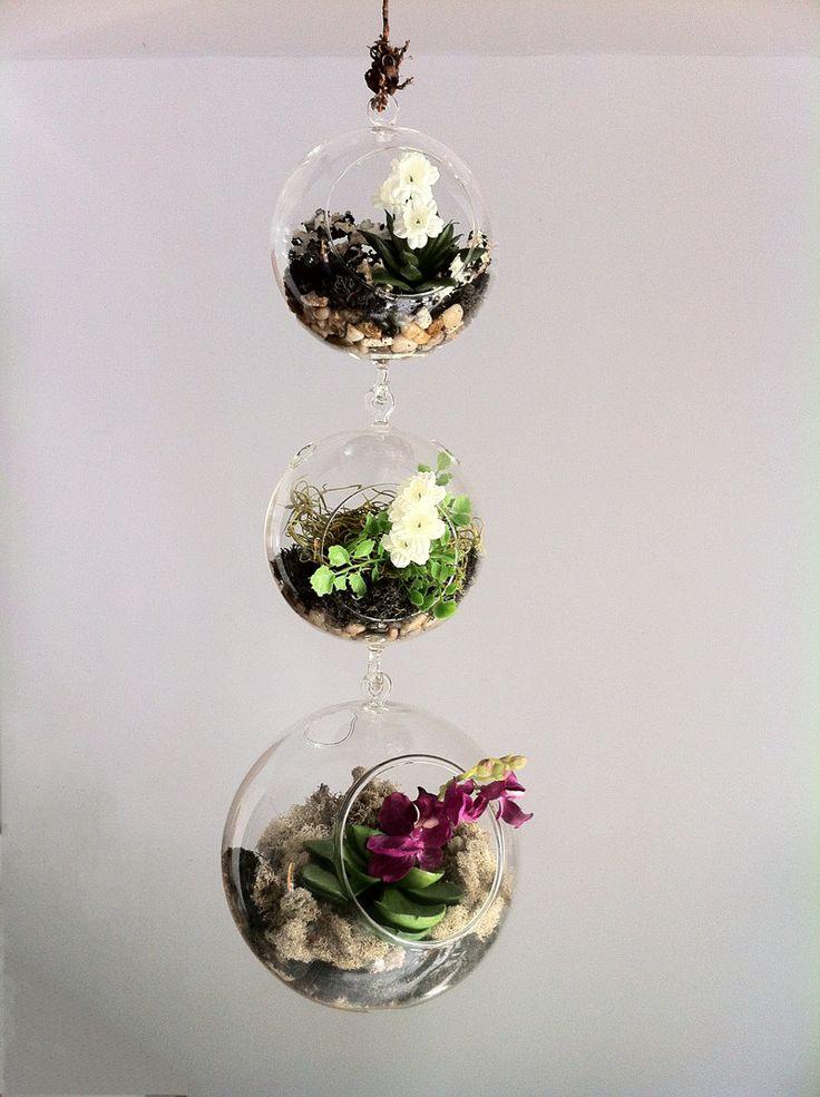 Terrario piante grasse  Idee e decorazioni  Pinterest