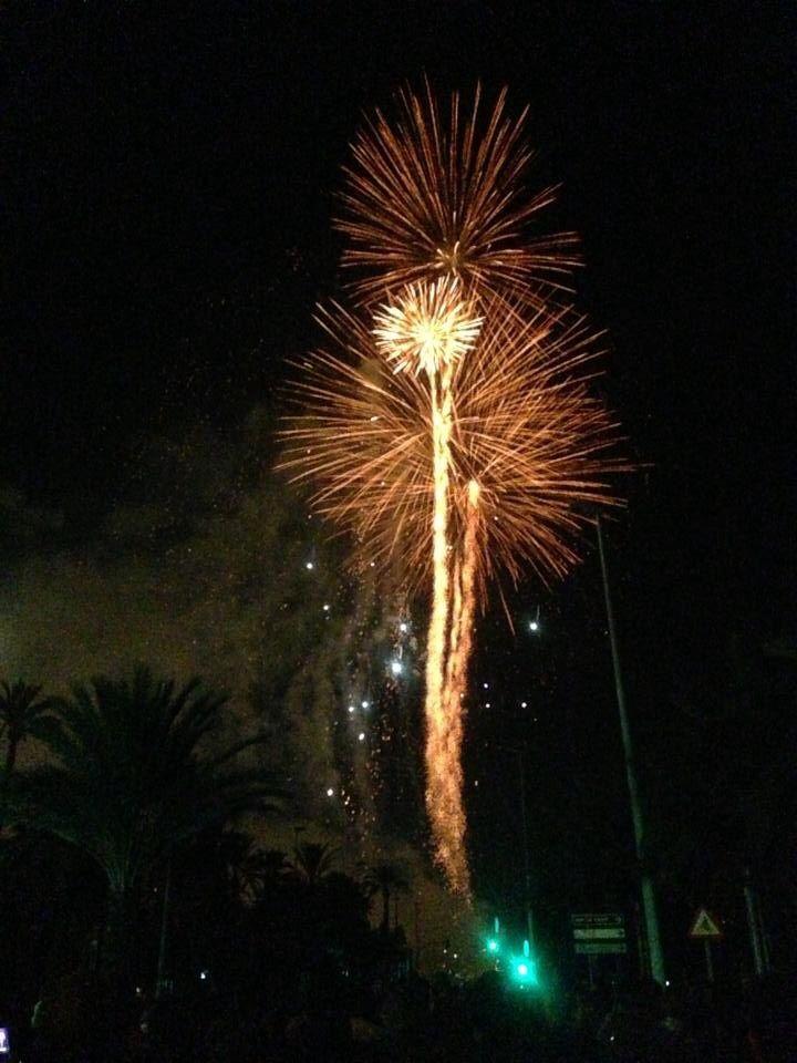 Fiestas Patronales de Elche, Pedro Palazon Yepes.