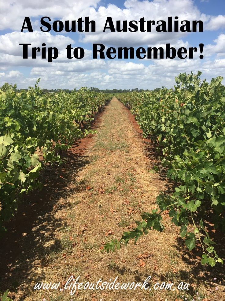 A South Australian Trip to Remember! – life outside work