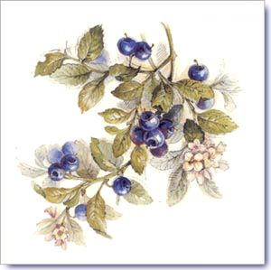 Fruits Design on Decorative Ceramic Tiles