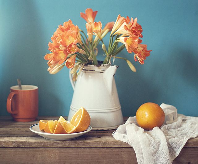 Fantastic still life photography by Anna Nemoy