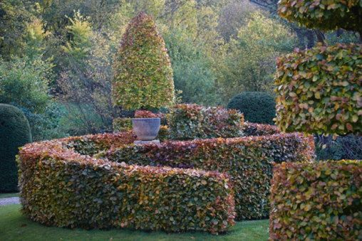 05_Autumnal_magic_photo_Britt_Willoughby_Dyer