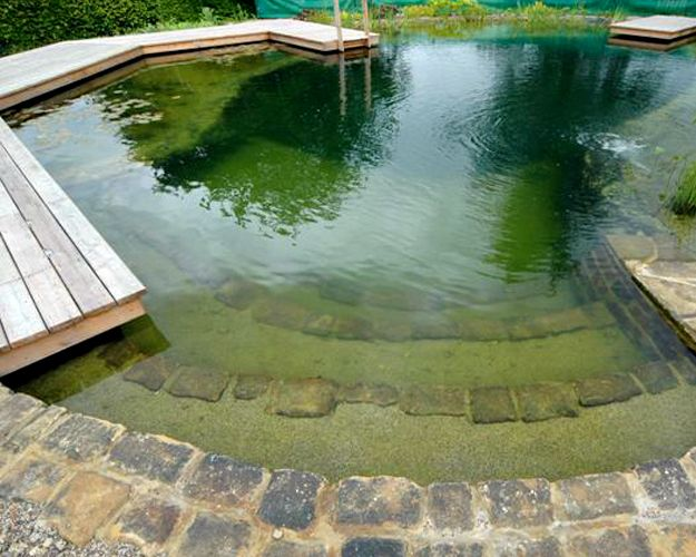 natural swimming pool - nice steps