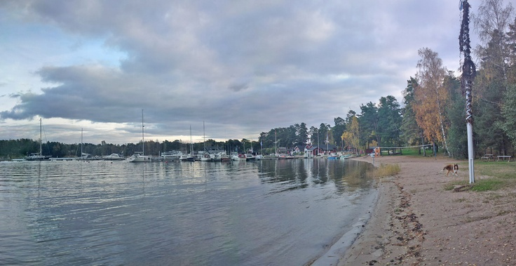Nauvo harbour's beach October 11th
