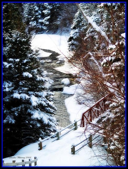 Bowring Park, Newfoundland and Labrador, Canada by Sandra Whiteway, via Flickr