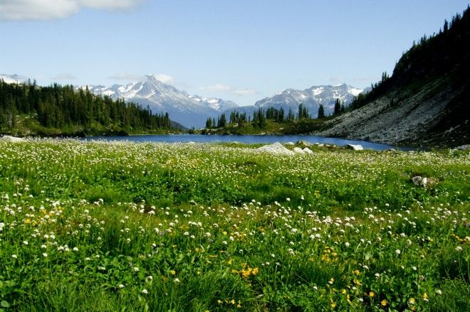 The rainbow lake is a rare place that combines forest, lake and mountains.