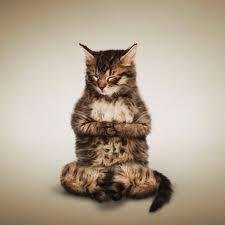 VIVERE IN SALUTE: yoga - alle fonti della MIndfulness o consapevolez...
