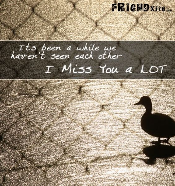 Missing You Friendship Quotes Missing Friends Quotes