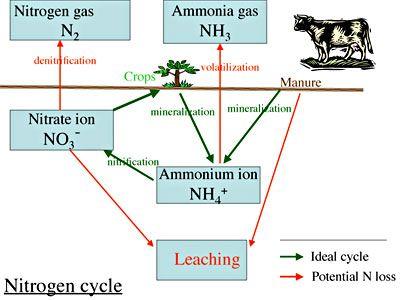 Leaching agriculture  Wikipedia